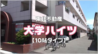 大学ハイツ10帖タイプ